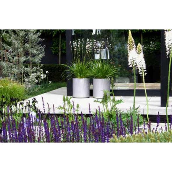 Workshop Gartengestaltung
