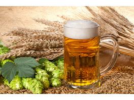 Kulinarische Brauereiführung & Bierverkostung