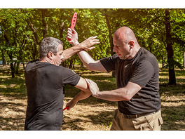 Krav Maga XXL Training