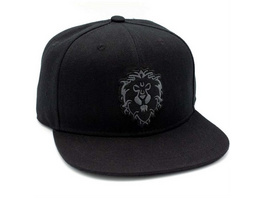 World of Warcraft - Snapback Allianz